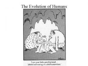 The Evolution of Humans The Evolution of Humans