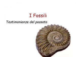 I Fossili Testimonianze del passato I Fossili Cosa