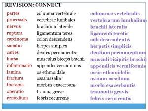 REVISION CONNECT partes processus nervus ruptura carcinoma sanatio