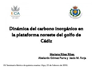 Dinmica del carbono inorgnico en la plataforma noreste