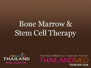 Bone Marrow Stem Cell Therapy Summary Stem Cell