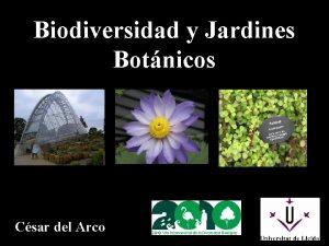 Biodiversidad y Jardines Botnicos Csar del Arco CUANTAS