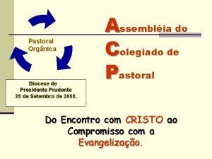 Pastoral Orgnica Diocese de Presidente Prudente 28 de