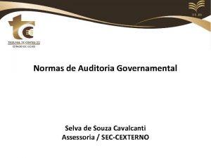 Normas de Auditoria Governamental Selva de Souza Cavalcanti