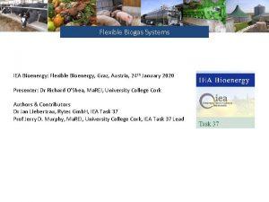 Flexible Biogas Systems IEA Bioenergy Flexible Bioenergy Graz