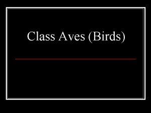 Class Aves Birds Class Aves Birds n Ornithologist