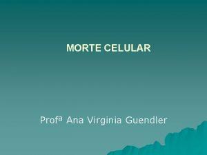 MORTE CELULAR Prof Ana Virginia Guendler MORTE CELULAR