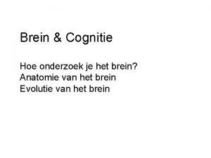 Brein Cognitie Hoe onderzoek je het brein Anatomie