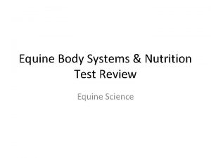 Equine Body Systems Nutrition Test Review Equine Science