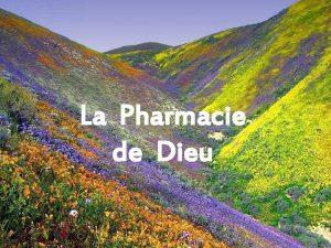 La Pharmacie de Dieu On dit que Dieu