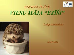 BIZNESA PLNS VIESU MJA EZI Lidija Kivleniece 16