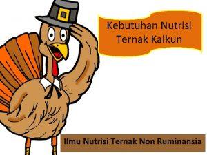 Kebutuhan Nutrisi Ternak Kalkun Ilmu Nutrisi Ternak Non