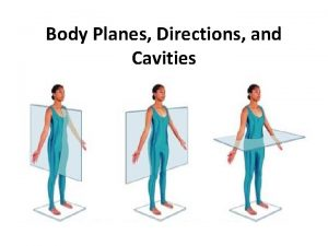 Body Planes Directions and Cavities Body Planes Imaginary