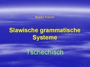 Branko Toovi Slawische grammatische Systeme Tschechisch 1 TSCHECHISCH