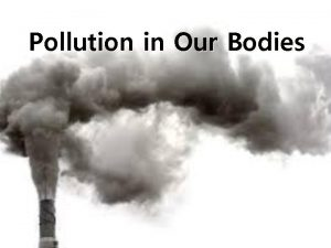 Pollution in Our Bodies Body Pollution pollution in