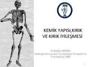 KEMK YAPISI KIRIK VE KIRIK YLEMES Dr Budak