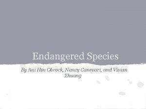 Endangered Species By Ani Hsu Obrock Nancy Canevari