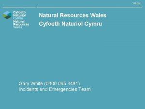 WAQMI Natural Resources Wales Cyfoeth Naturiol Cymru Gary