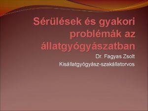 Srlsek s gyakori problmk az llatgygyszatban Dr Fagyas