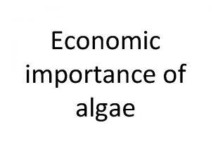 Economic importance of algae Economic importance of Algae