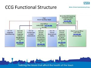CCG Functional Structure Chair Governing Body Board Chief