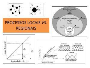 PROCESSOS LOCAIS VS REGIONAIS PROCESSOS LOCAIS VS REGIONAIS