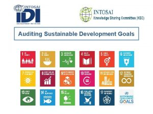Auditing Sustainable Development Goals Auditing Sustainable Development Goals