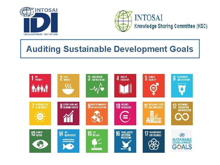 Auditing Sustainable Development Goals Auditing Sustainable Development Goals