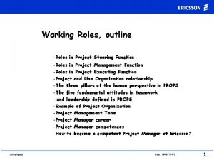 Working Roles outline Roles in Project Steering Function