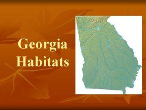 Georgia Habitats Georgia Piedmont Habitat n n The