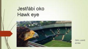 Jestb oko Hawk eye EPL LUK 421954 Obsah