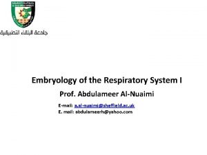 Embryology of the Respiratory System I Prof Abdulameer