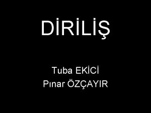 DRL Tuba EKC Pnar ZAYIR 7 Enver Paa