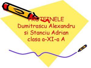 PROTEINELE Dumitrascu Alexandru si Stanciu Adrian clasa aXIa