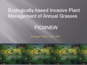 Ecologicallybased Invasive Plant Management of Annual Grasses FICMNEW