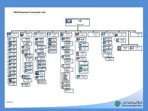 MSEM Department Organization Chart CORPORATE HEALTH SAFETY ENVIRONMENT