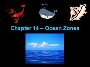 Chapter 14 Ocean Zones Exploring the Ocean Exploring