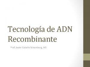 Tecnologa de ADN Recombinante Prof Javier Cabello Schomburg