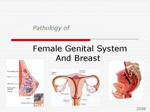 Pathology of Female Genital System And Breast 2008