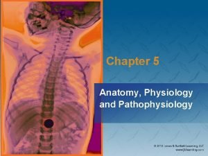 Chapter 5 Anatomy Physiology and Pathophysiology National EMS
