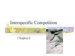 Interspecific Competition Chapter 6 Interspecific Competition n Individuals