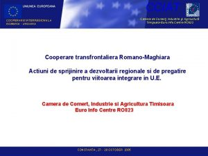 CCIAT Camera de Comer Industrie i Agricultur TimioaraEuro