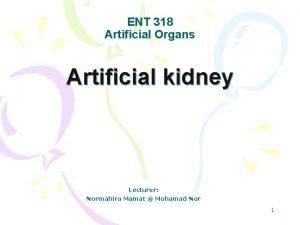 ENT 318 Artificial Organs Artificial kidney Lecturer Normahira