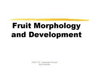 Fruit Morphology and Development HORT 319 Temperate Fruit