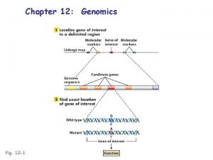 Chapter 12 Genomics Fig 12 1 Genomics the