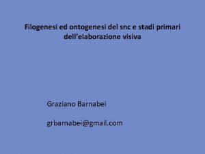 Filogenesi ed ontogenesi del snc e stadi primari