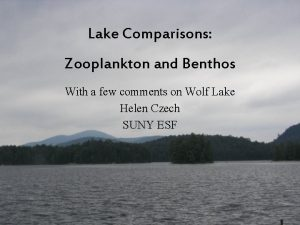 Lake Comparisons Zooplankton and Benthos With a few