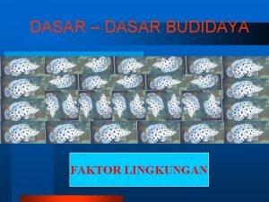 DASAR DASAR BUDIDAYA FAKTOR LINGKUNGAN BUDIDAYA LINGKUNGAN 1