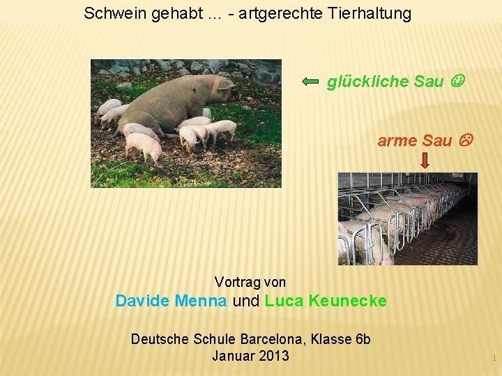 Schwein gehabt artgerechte Tierhaltung glckliche Sau arme Sau