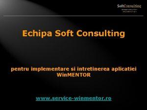 Echipa Soft Consulting pentru implementare si intretinerea aplicatiei